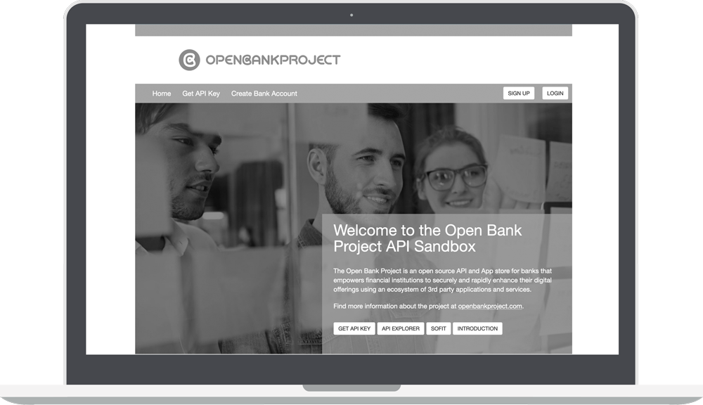 Greyscale Open Bank Project API Sandbox Page